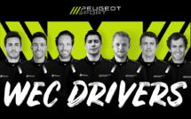 24h du Mans : Peugeot et ses 7 mercenaires